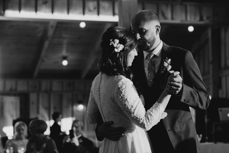 074_photographer_vineyards_virginia_faithbrooke_shenandoah_barn_luray_wedding.jpg