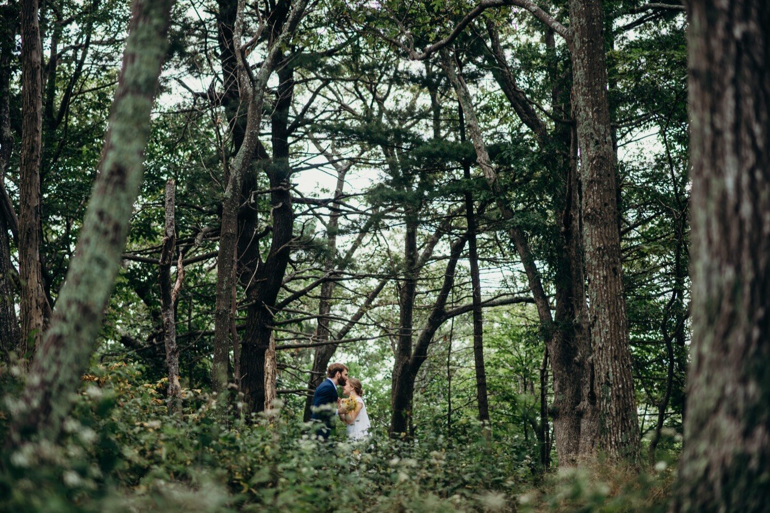 52_park_skyland_skyline_drive_shenandoah_national_wedding.jpg