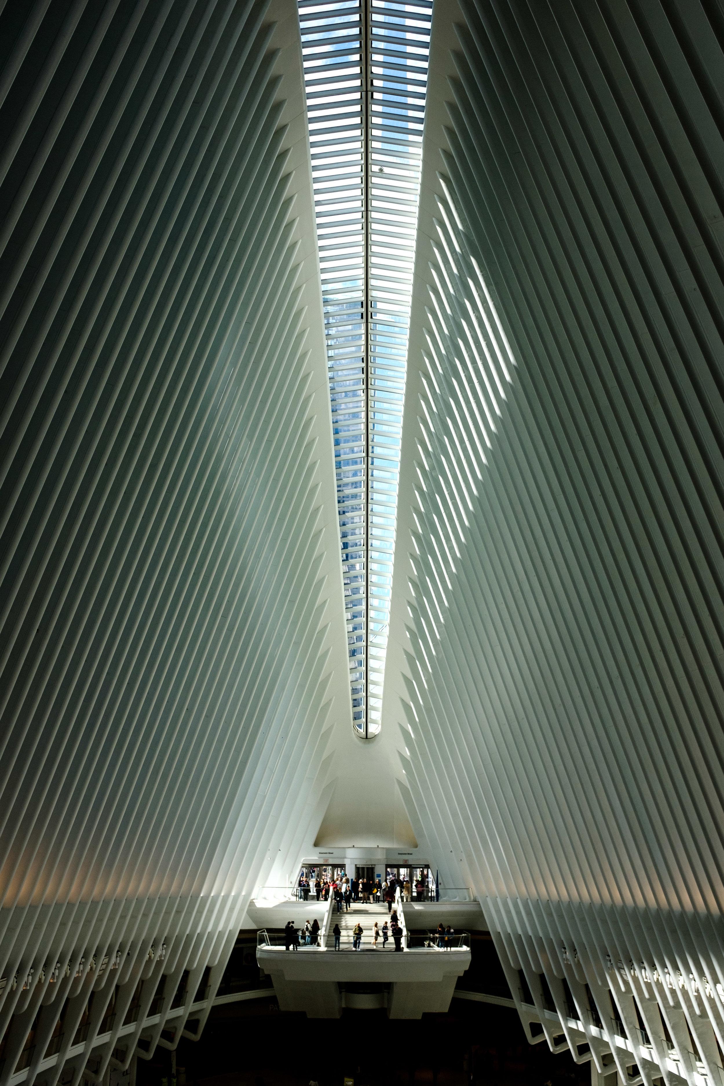 NYC 2-12.jpg
