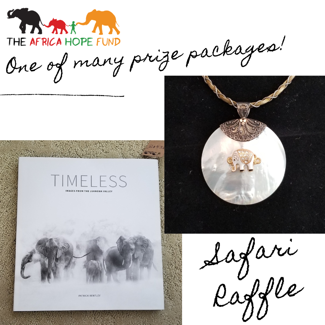 Necklace and Timeless Package.png
