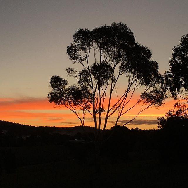 Volunteer on your next trip. You will never regret it ~ . . . #travel #aroundtheworld #adventure #australia #sunset #volunteering #givealilback