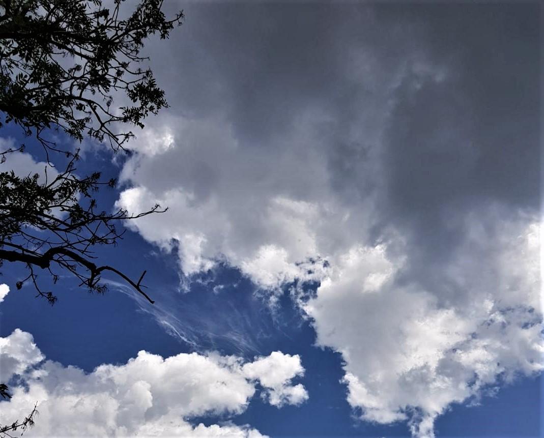 Clouds (2).jpg