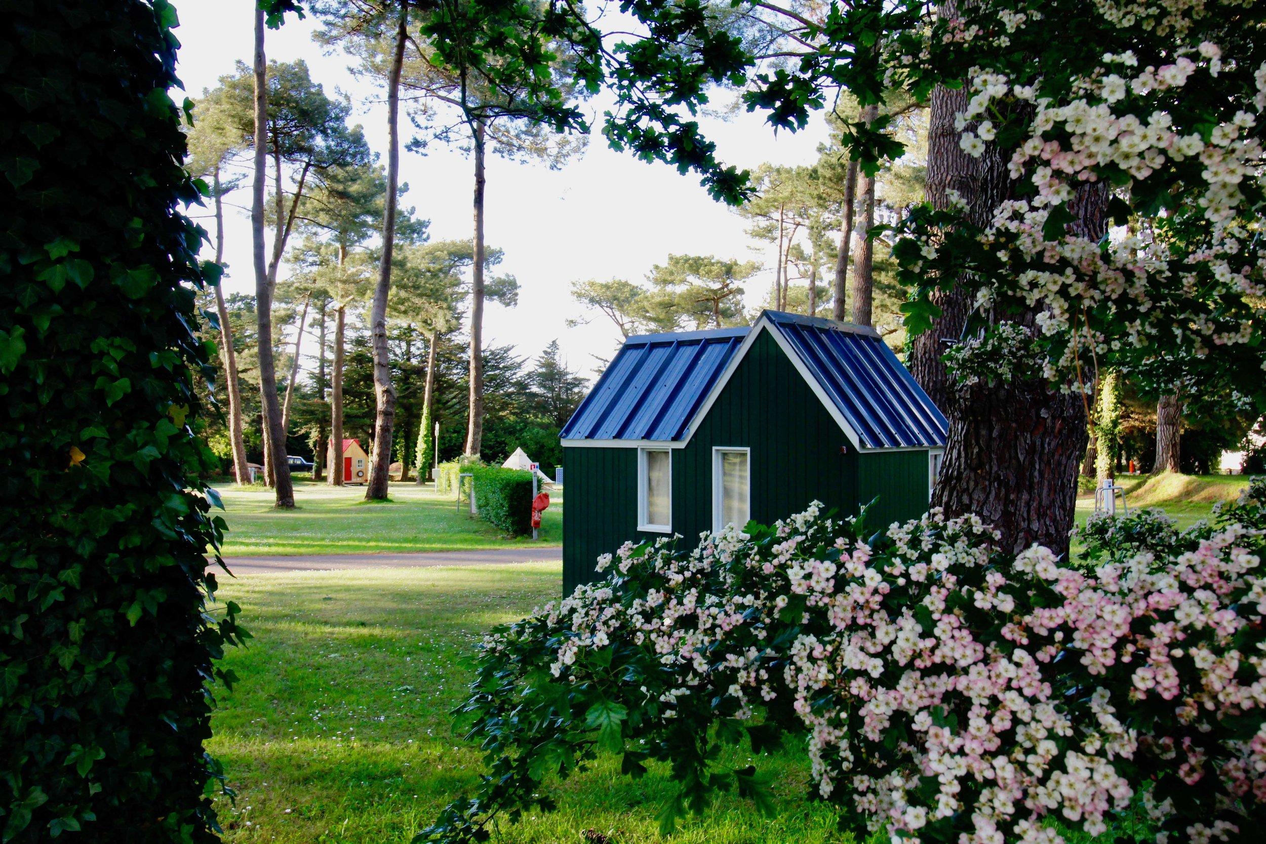 The campsite -