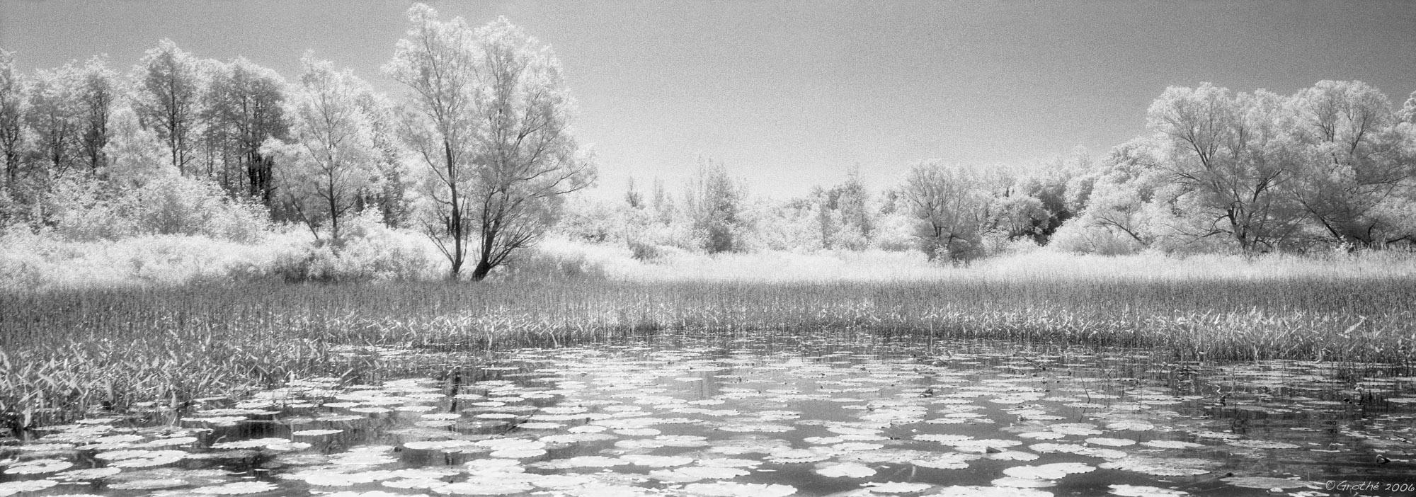 L'étang chimérique I (2002)