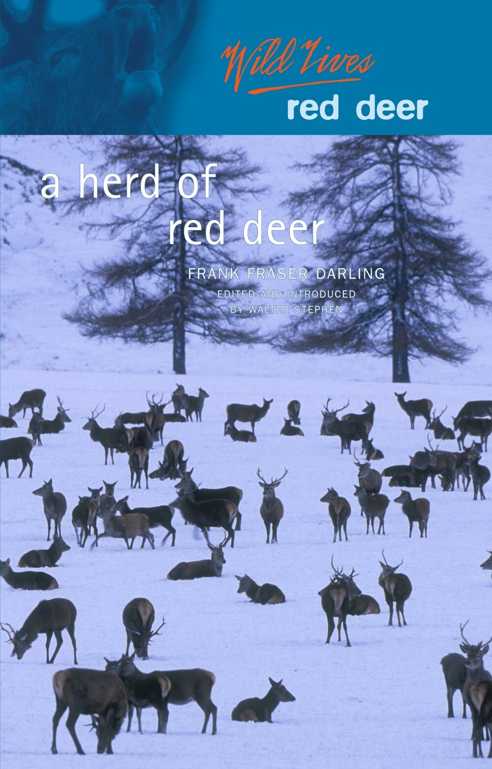 Herd+of+Red+Deer Luath Press.jpg