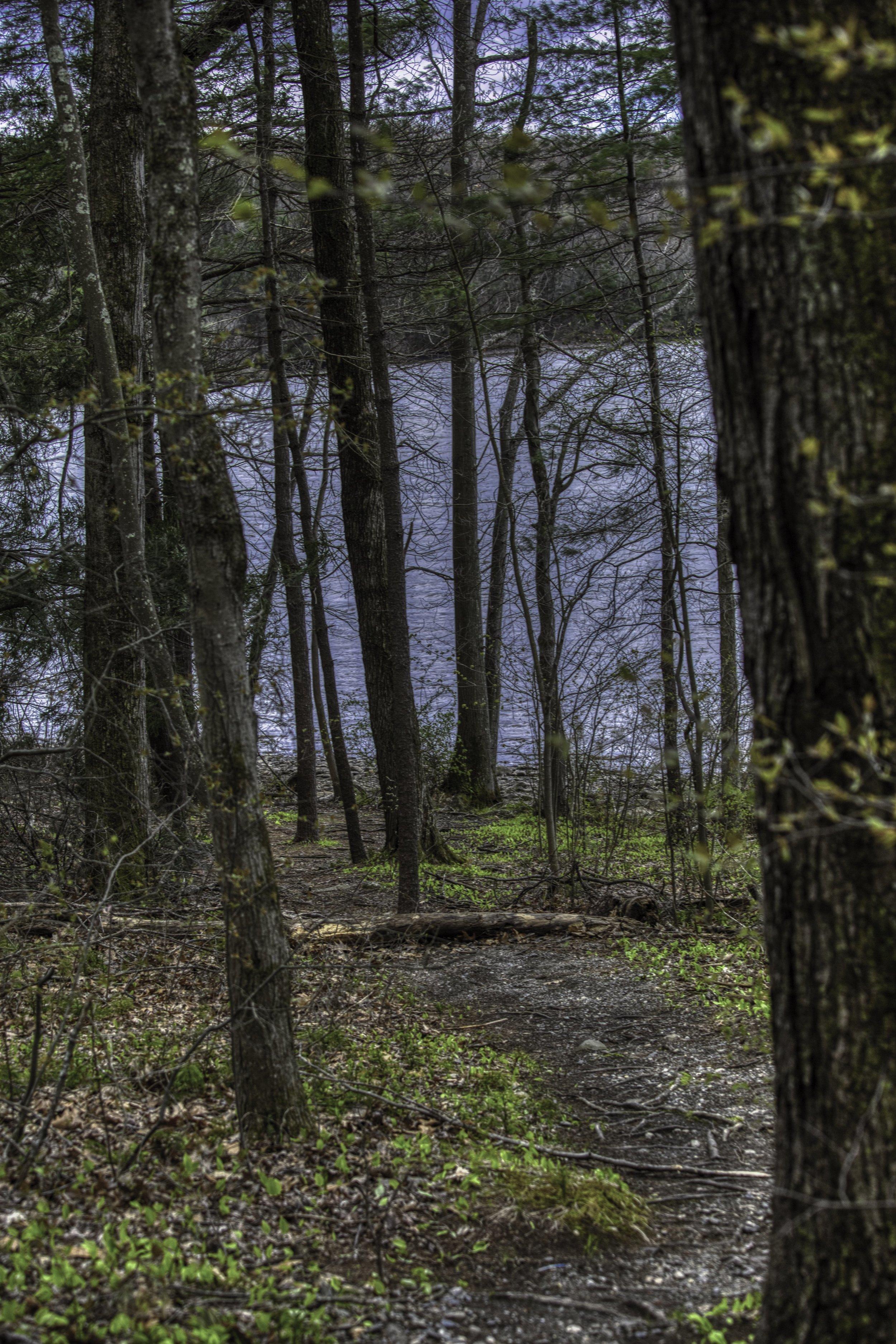 trail 1.jpeg
