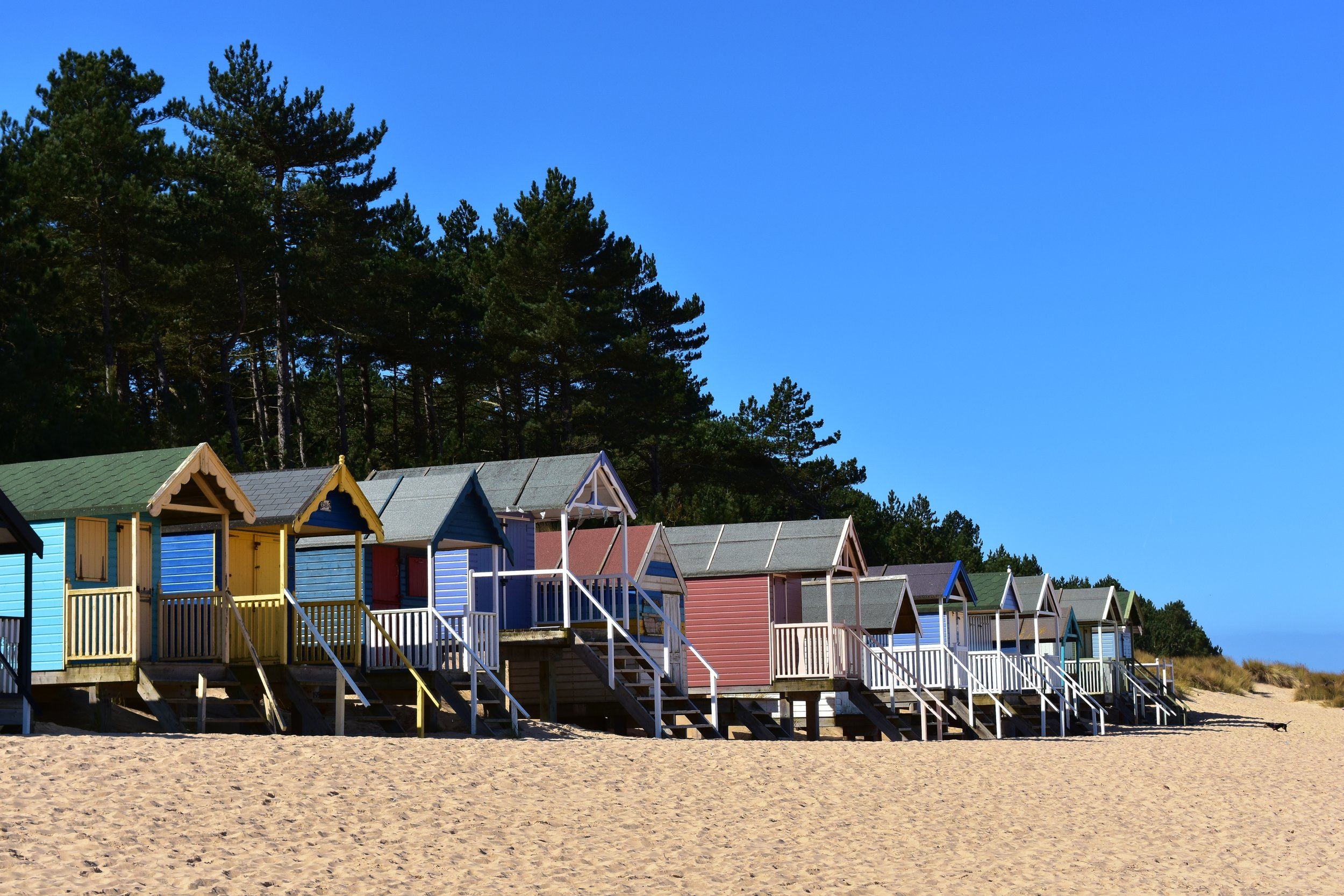 Wells-next-the-Sea - The beautiful sandy beach with its colourful beach huts set against a backtrop of pine trees and sand dunes is easily accessible from the town. Take a walk from the harbour or catch the miniature steam train.  The busy quay is a popular place for crabbing and watching the fishing boats.  Take a boat trip to explore the harbour or to spot some seals.