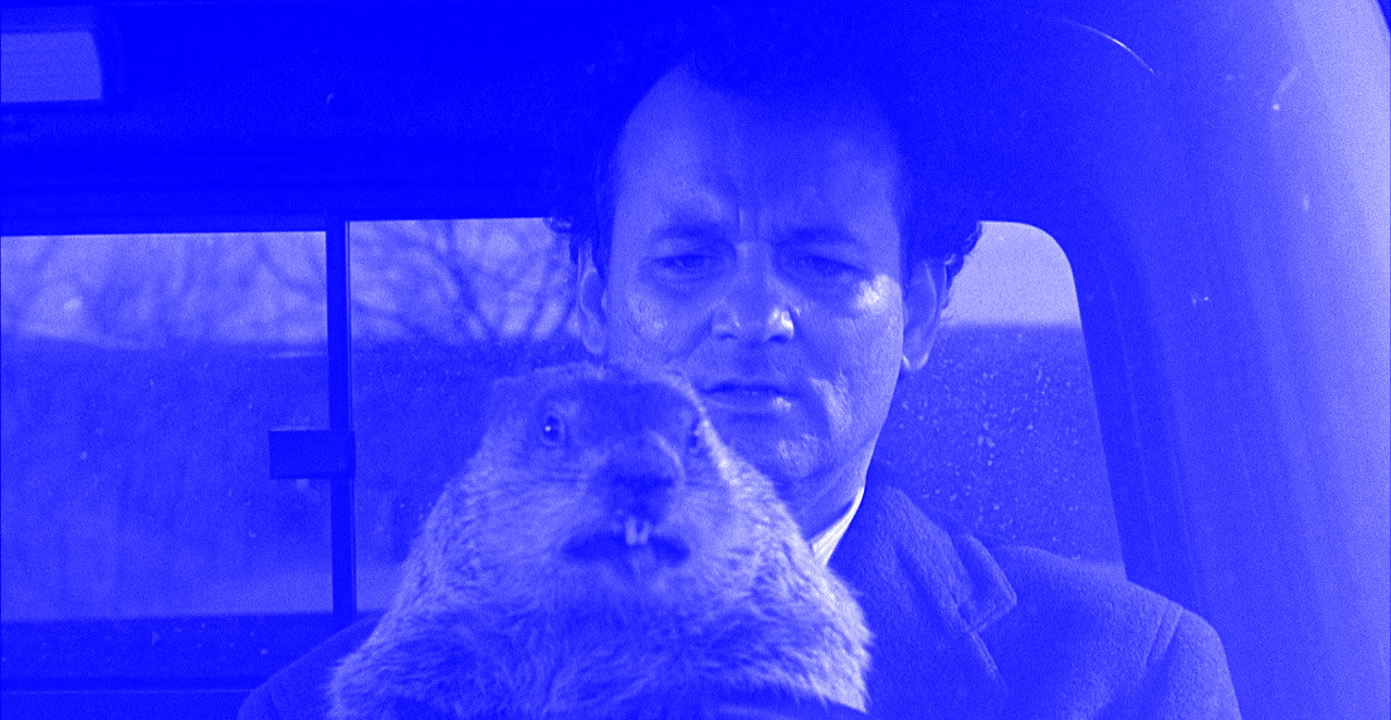 groundhog-day.png