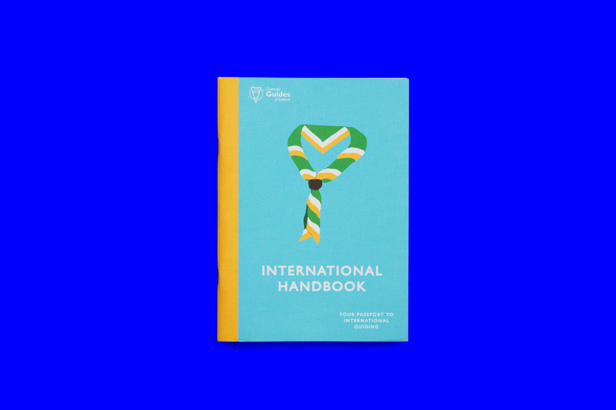 CGI-International-Handbook-Cover.jpg