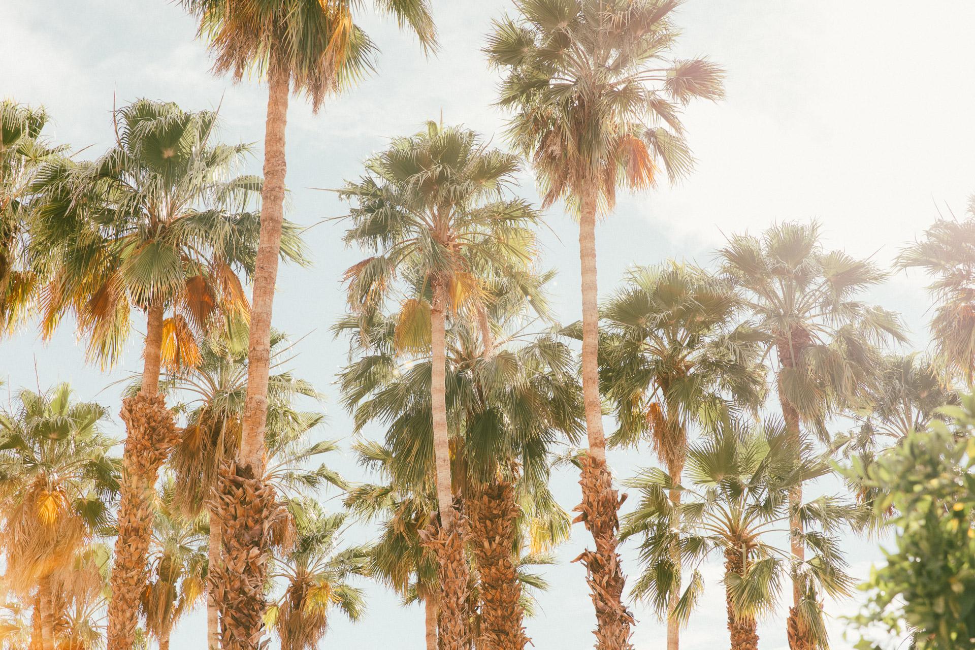palm-springs-california-hotel-photographer-la-quinta-resort-club-10.jpg