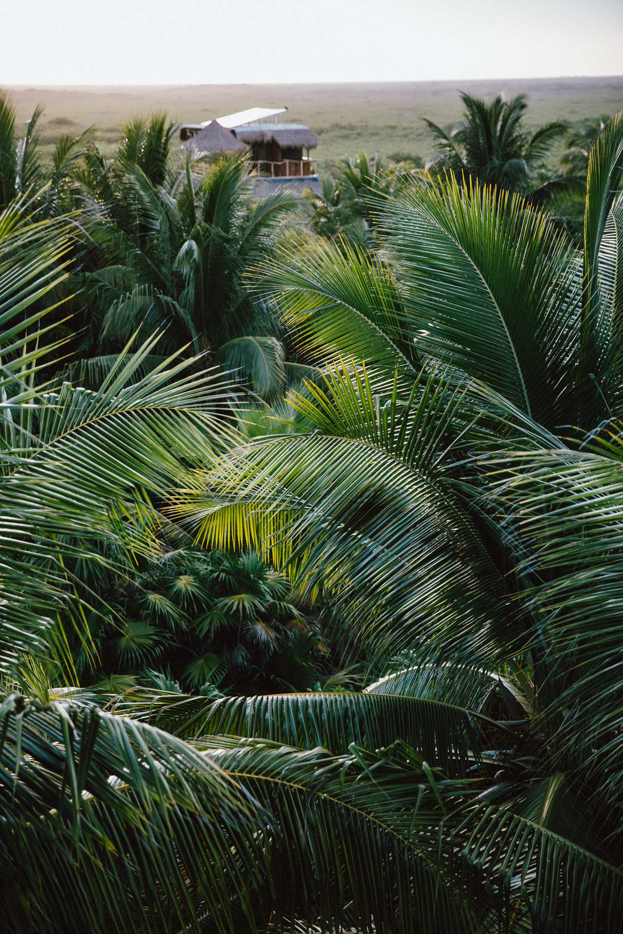 caribbean-hotel-resort-photographer-olas-tulum-mexico-0150.jpg