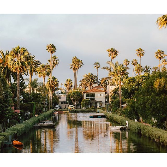 Friday vibes. 🌴 Outtakes from my Hemispheres LA feature. #venicecanals #losangeles