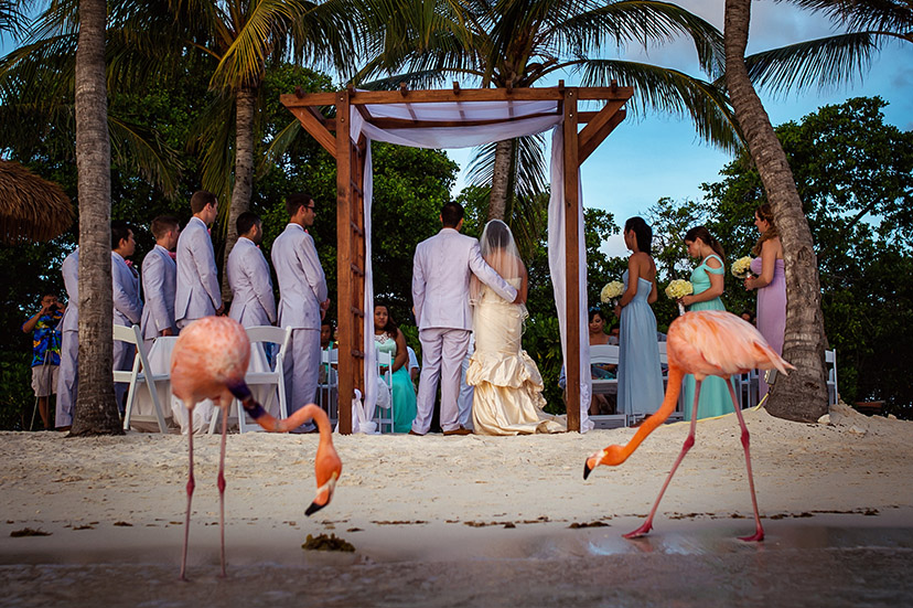 aruba_wedding_photography_21.jpg