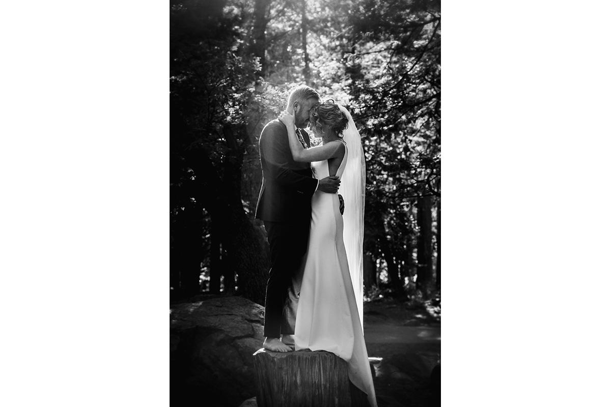 yosemite_wedding_39.jpg