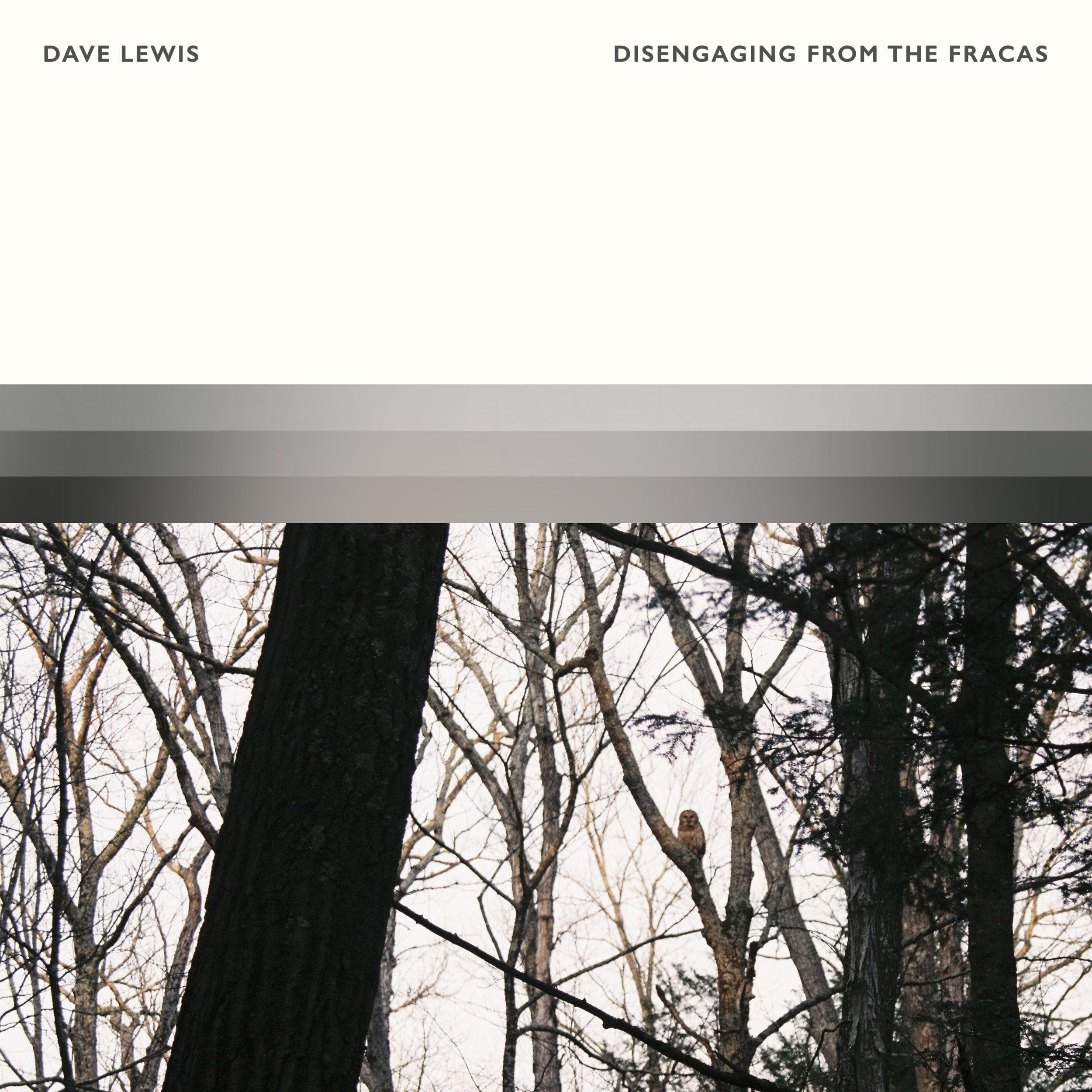 Dave Lewis - Disengaging From The Fracas