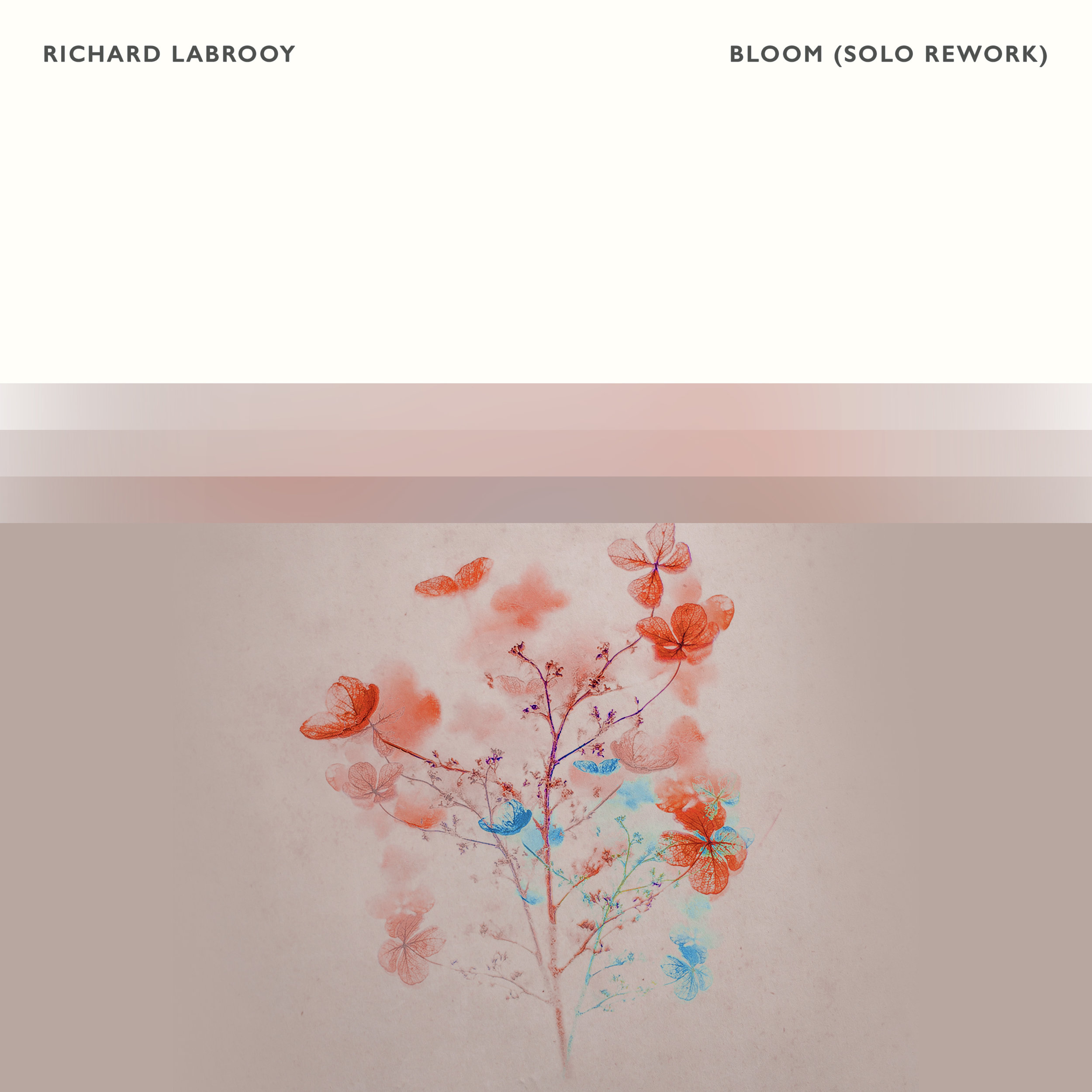 Richard LaBrooy - Bloom (Solo Rework)