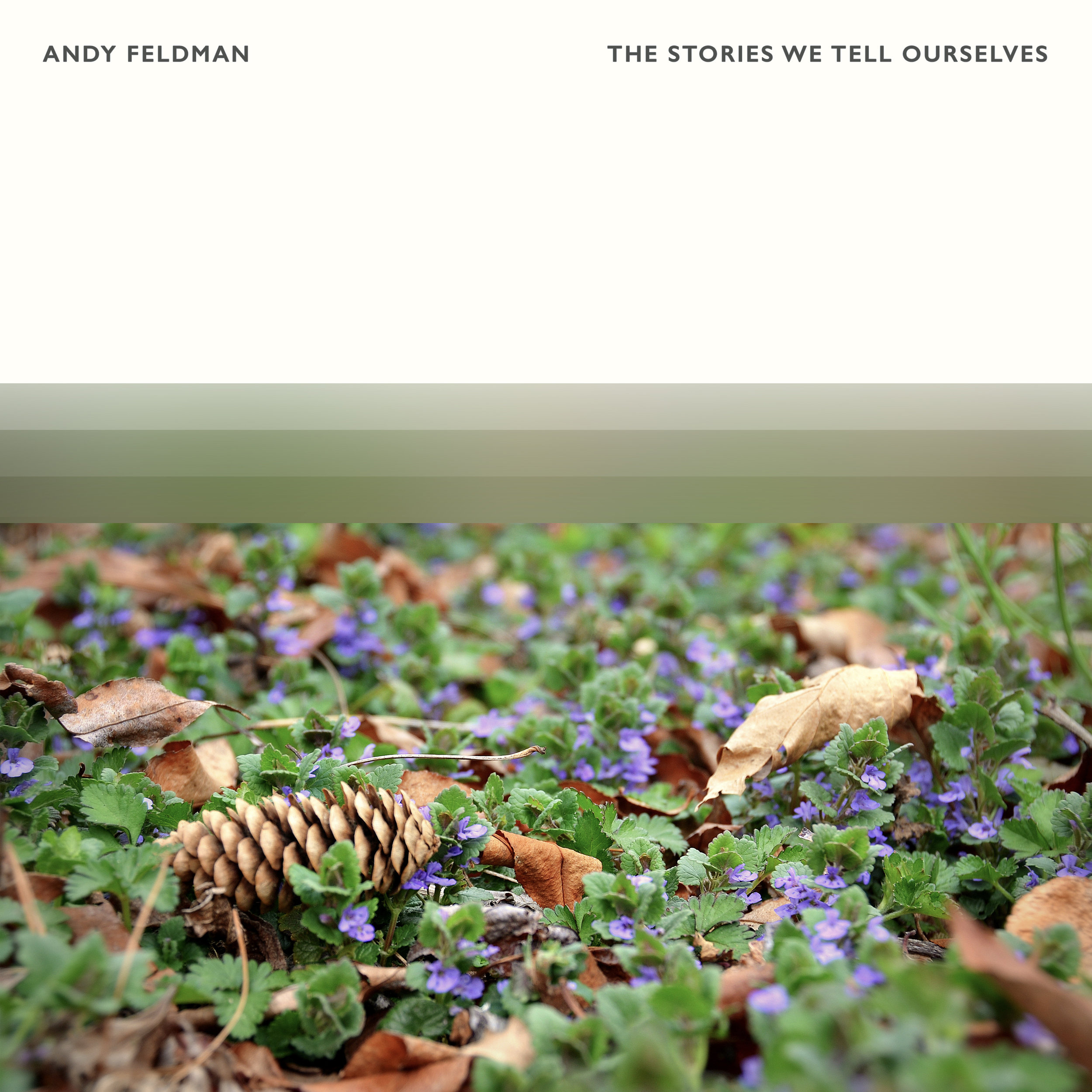 Andy Feldman - The Stories We Tell Ourselves