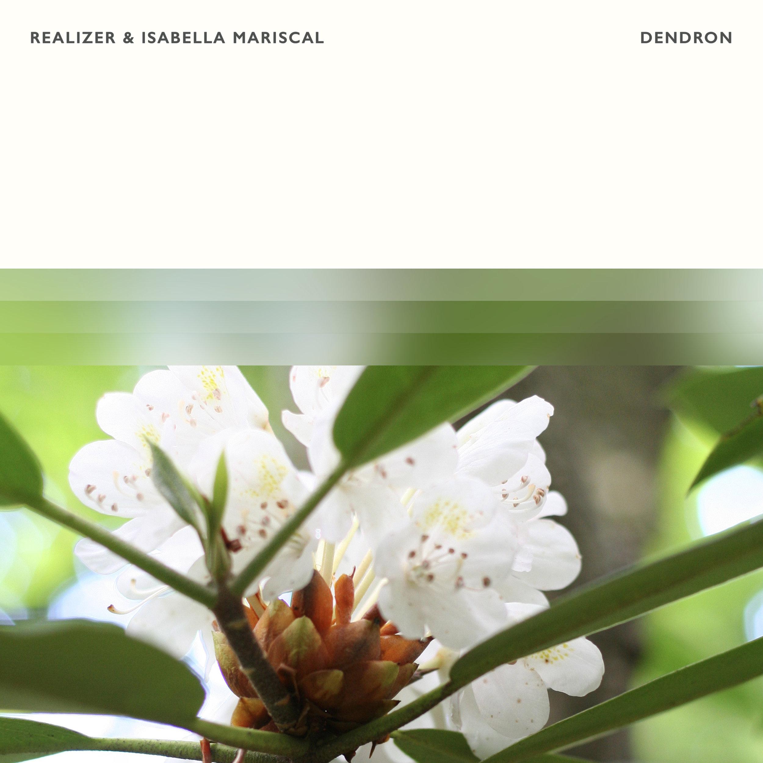 Realizer & Isabella Mariscal — Dendron