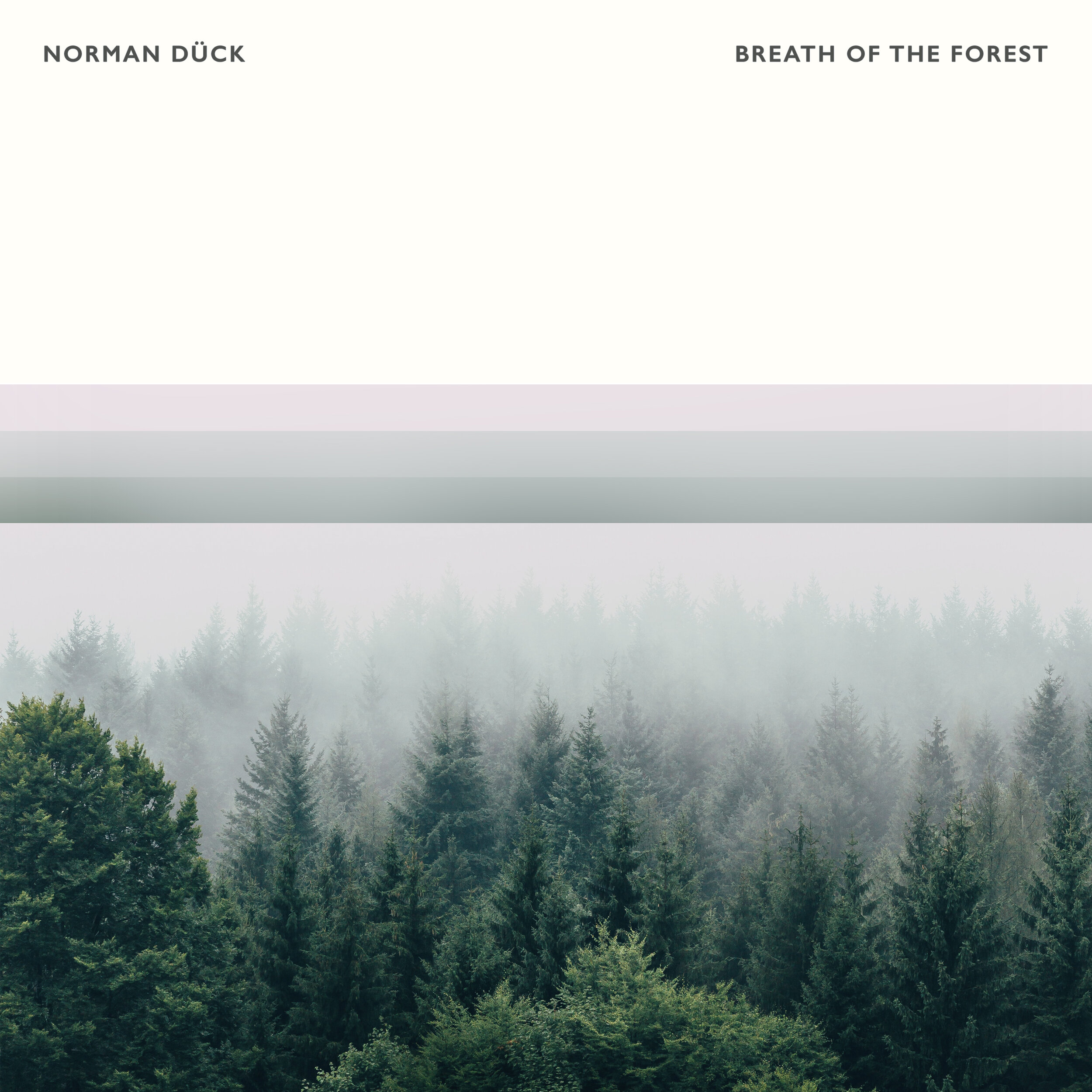Norman Dück - Breath Of The Forest
