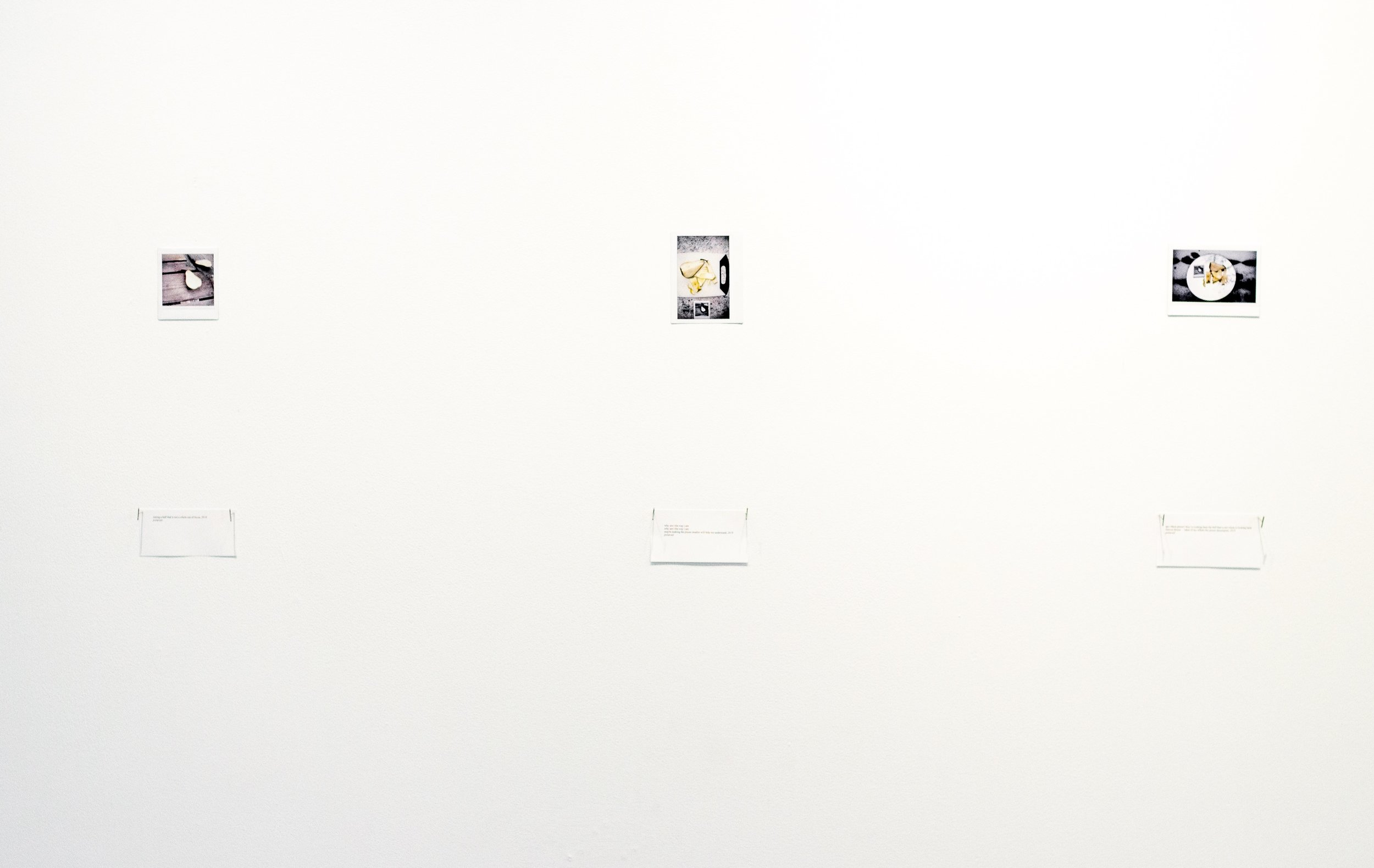 installation shot,  2019    polaroids