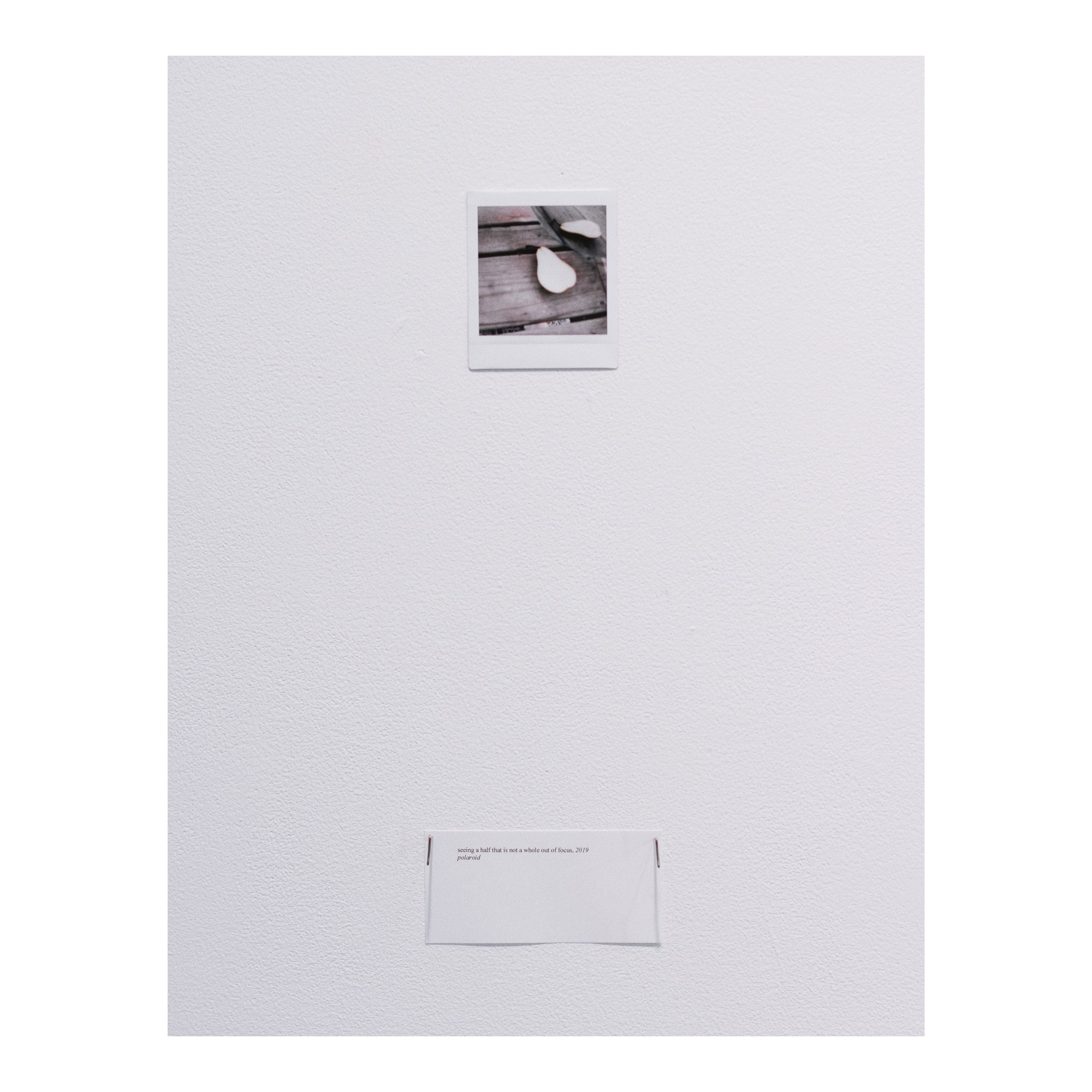 seeing a half that is not a whole out of focus, ​ 2019 polaroid