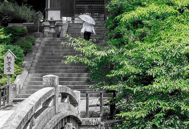Shoshin... If your mind is empty it's always ready for anything... ©DavidPicarda #Tokyo #blackandwhite #japenese #japan #kyotojapan #travelphotography #travel #kawaii #otaku #fujifilm_xseries #fujixe2 #fujixcamera #fujixclub #japan_daytime_view #mystopover #trip #photooftheday #japaneseart #igjapan  #airnewzealand #mystopover #majestic_earth #instagood  #500px #lnstagramjapan #ig_japan #Kyoto #ilovejapan #ilovekyoto #ilovetokyo #tokyocameraclub