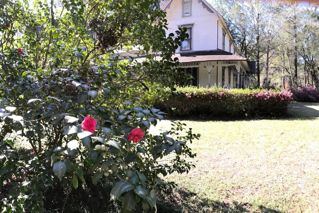 houseflowers.jpg