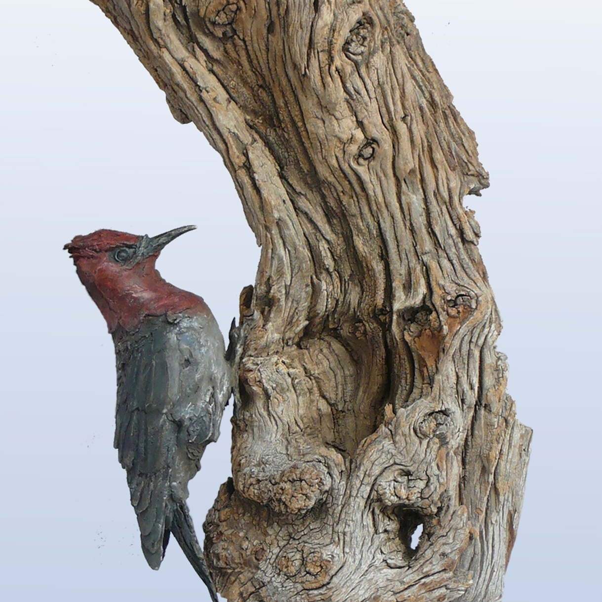 CHECK OUT VULTURE SCULPTURE'S NEW WORK -
