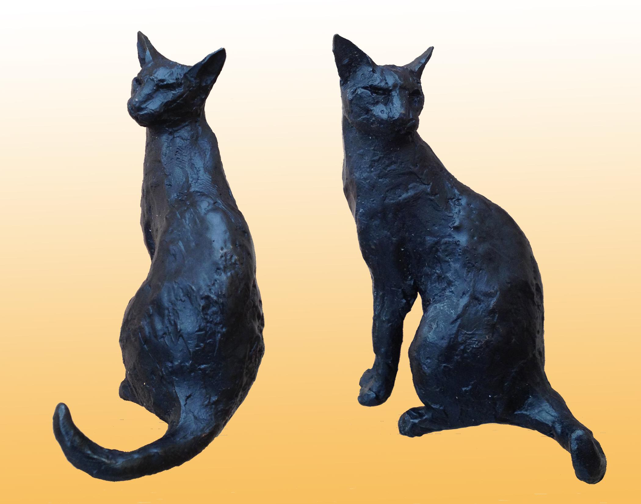 sitting-cats.jpg