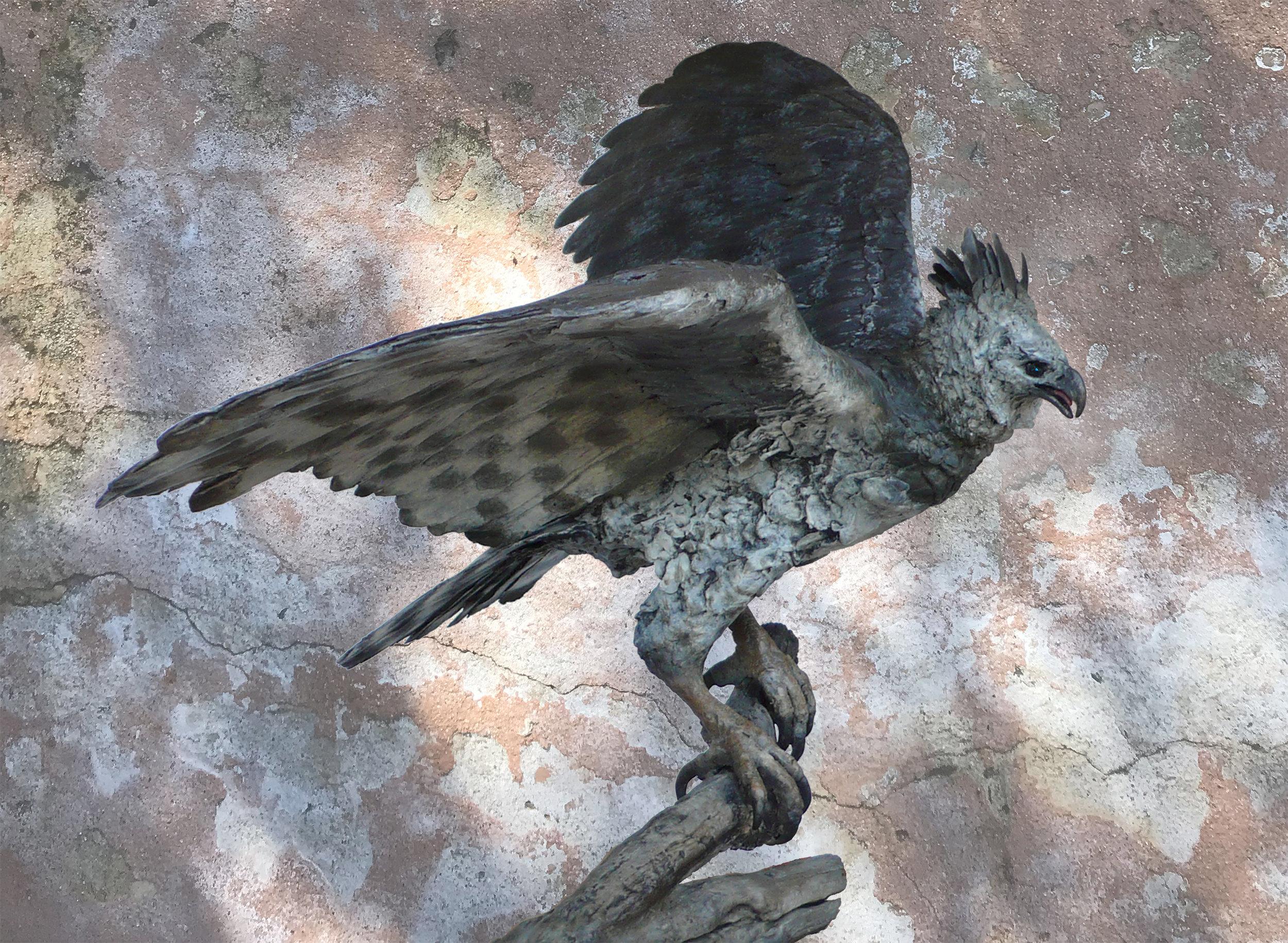 wingout Harpy copy.jpg