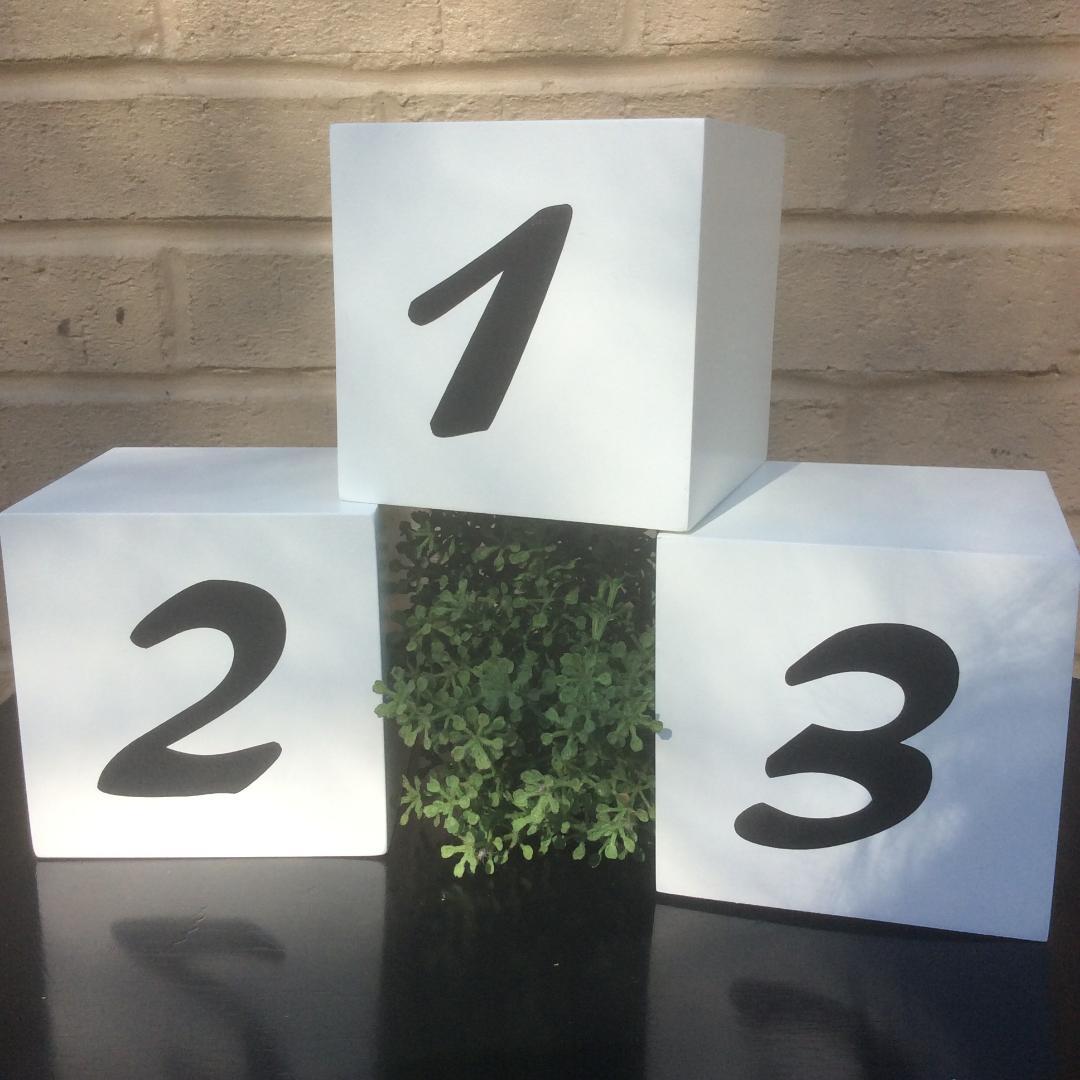 Wooden Table Numbers - Rental: $1.00 each 1-20. 4 x 4 block