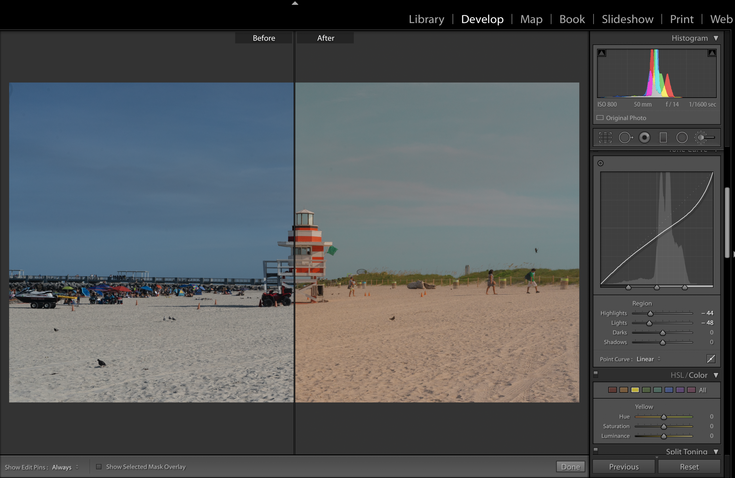 cynlagos-beforeandafter-colorcorrections-palms
