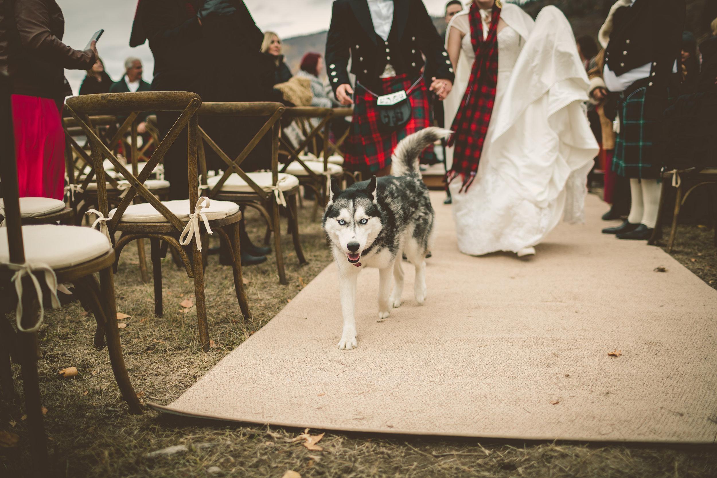 Faith and Russ Wedding!-422.jpg