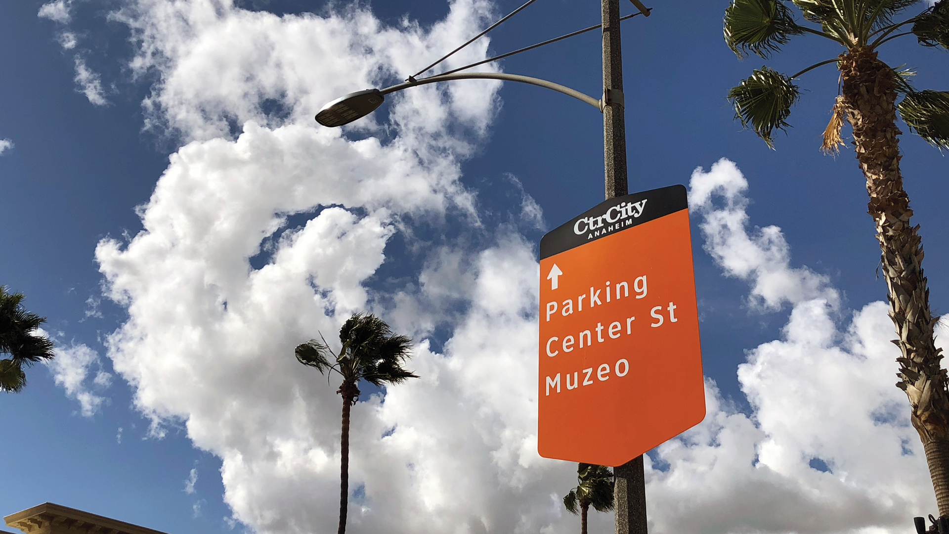 Anaheim CtrCity 3.jpg