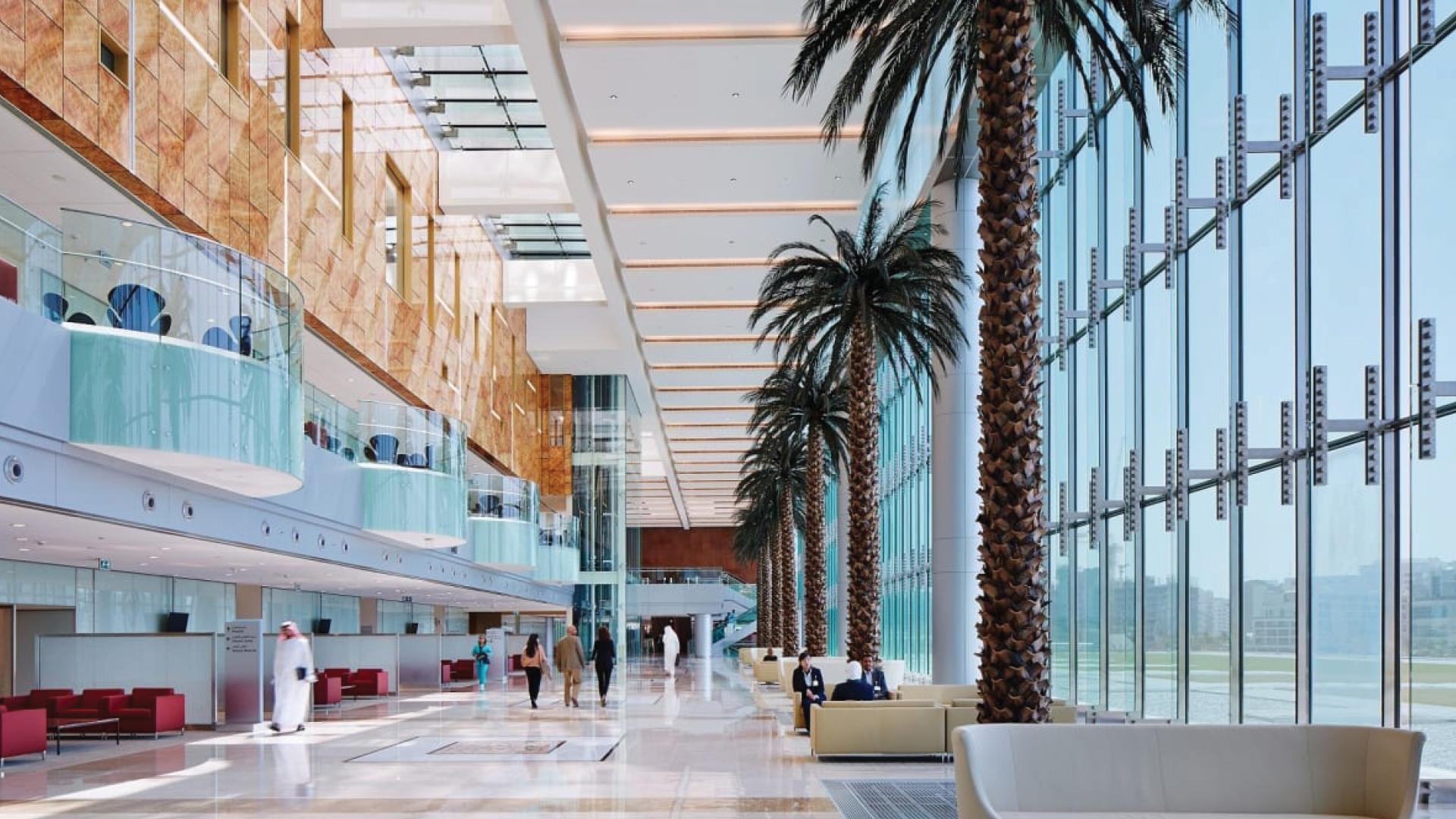Cleveland Clinic Abu Dhabi 5.jpg