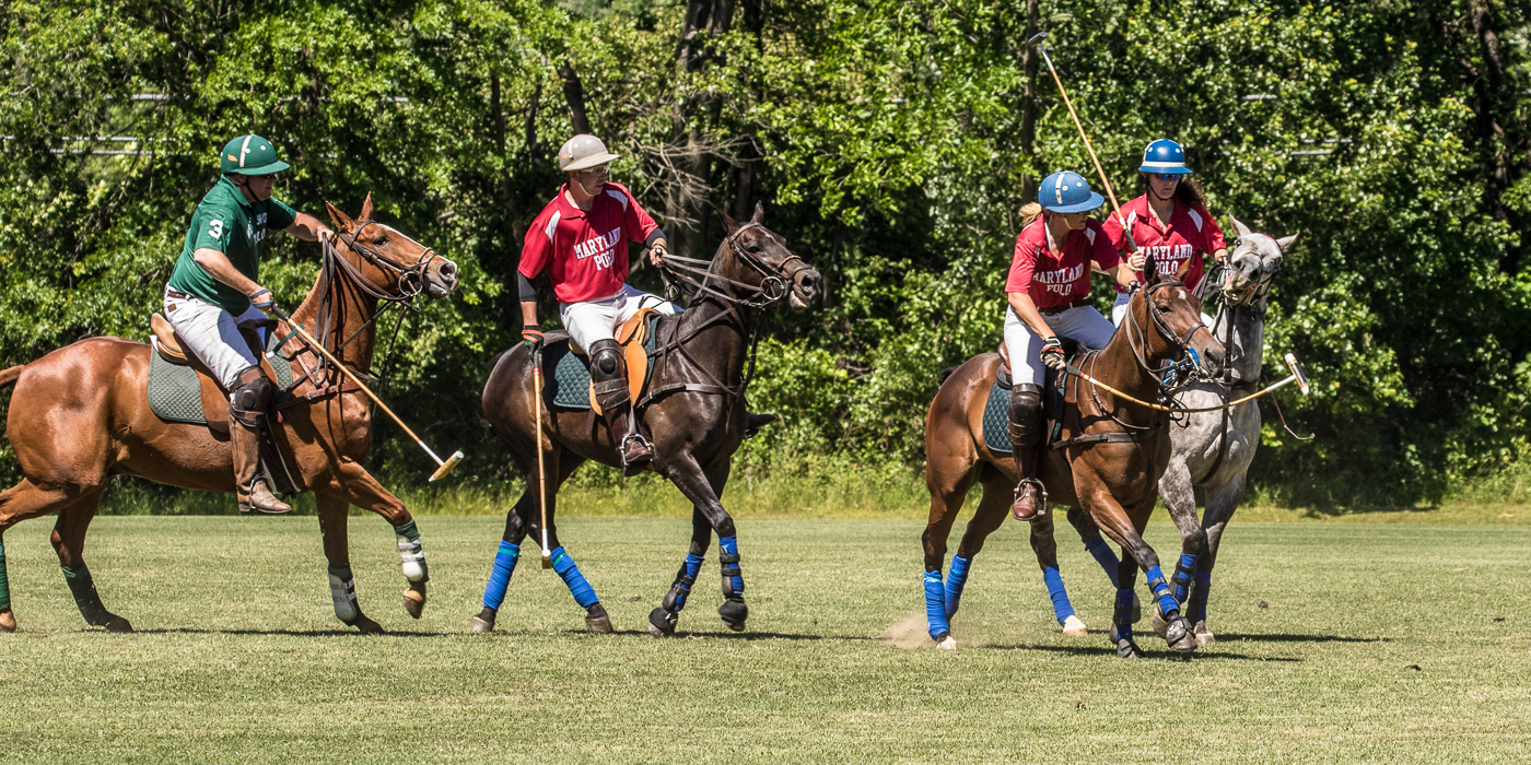 Maryland Polo Vs Red Maple Polo