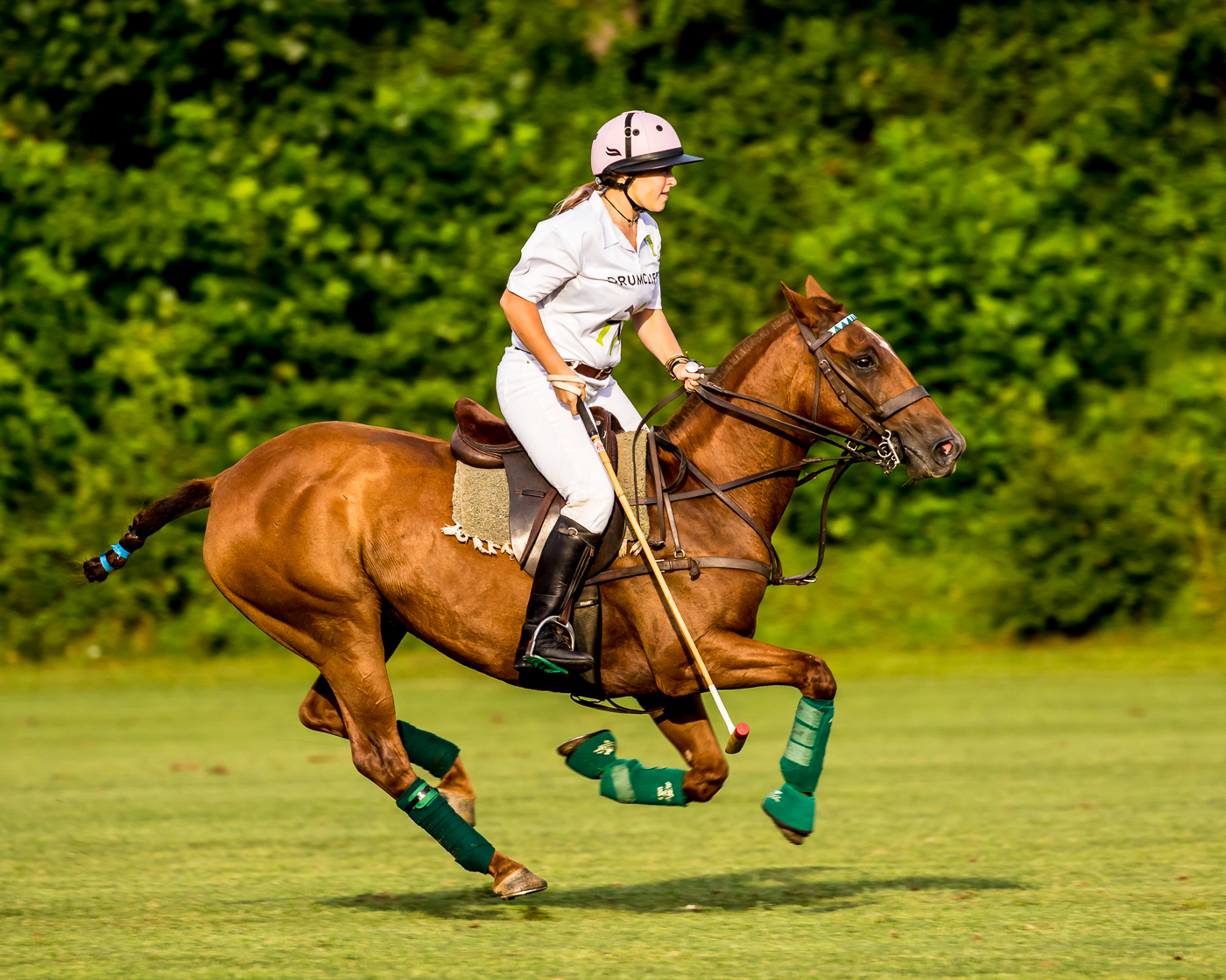 Maryland Polo Labor Cup Tournament