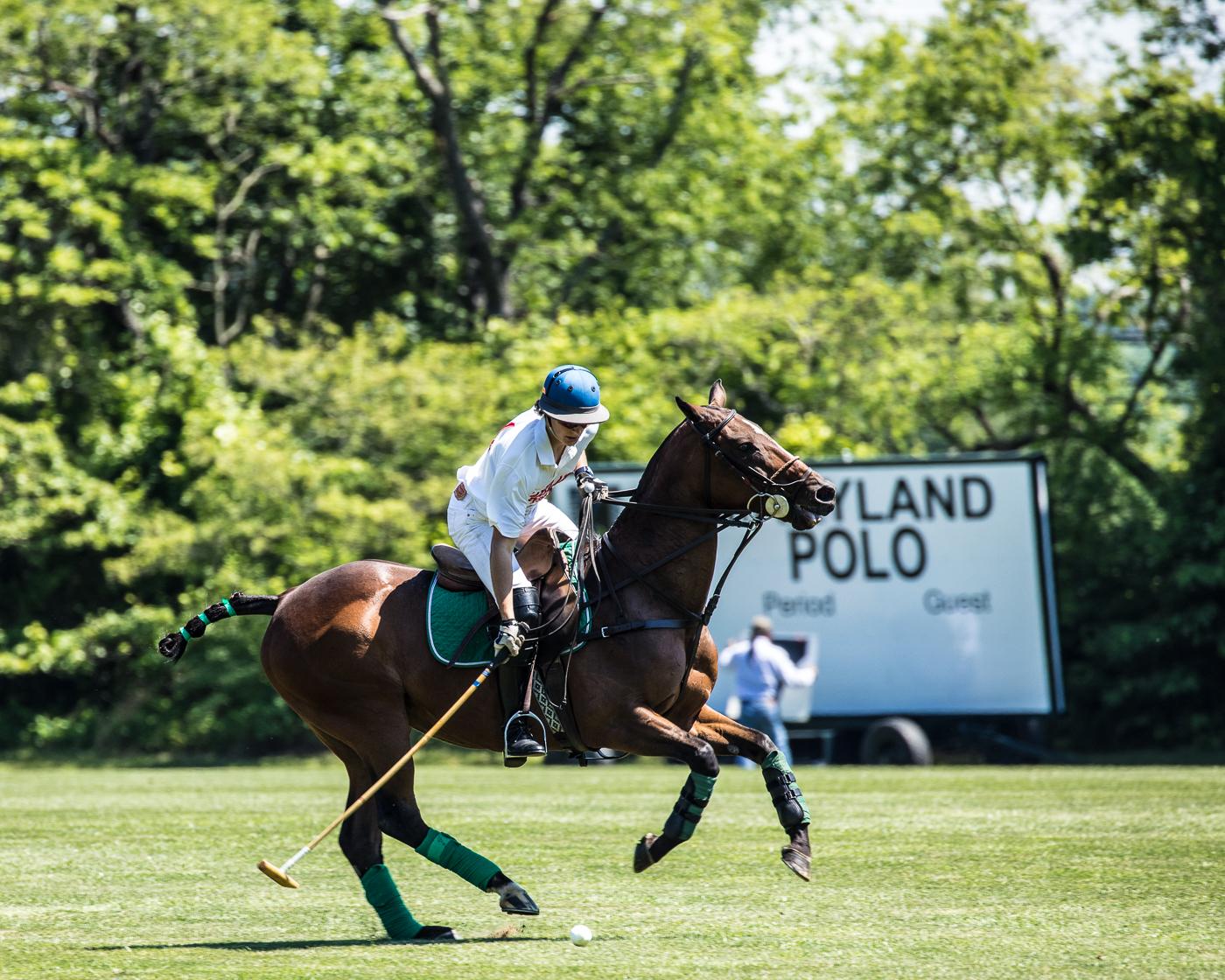 Sunday at Maryland Polo Club