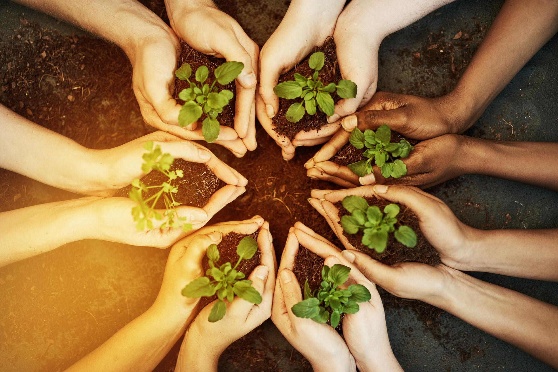community Grants Writing Funding