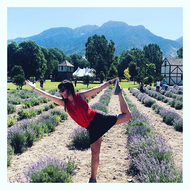 Having the most inspirational trip to Utah! Here on the Young Living Farm, bonding with the high vibe lavender plants!  #25yearsyoungliving #plantvibes #dancerpose #yogaeverywhere