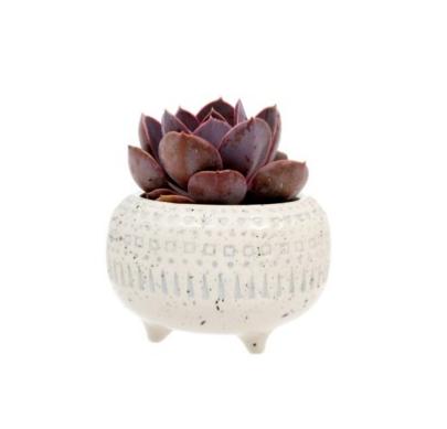 Floretine Footed Flower Pot