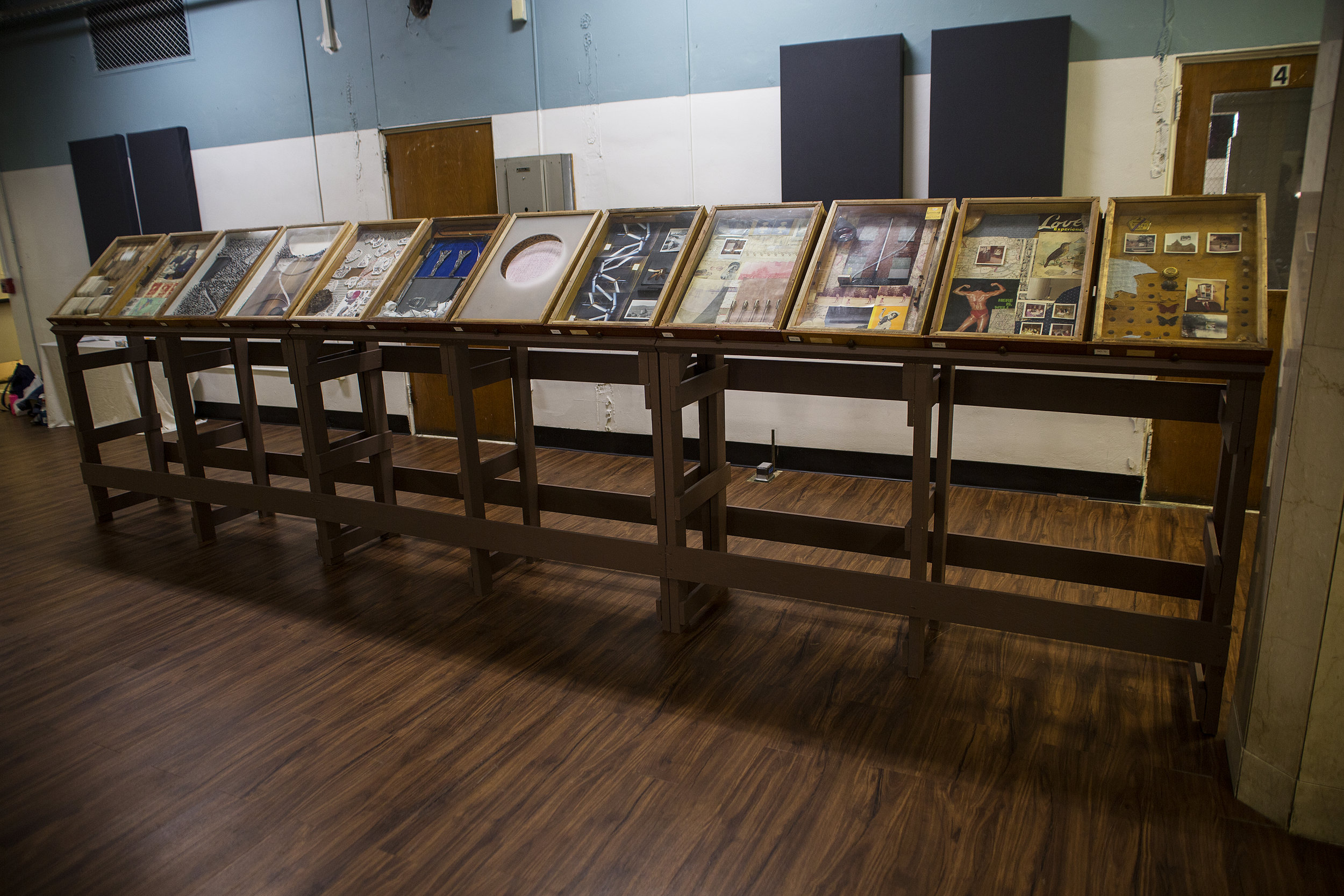Archive of 12 specimen boxes on stands, 18 linear feet.