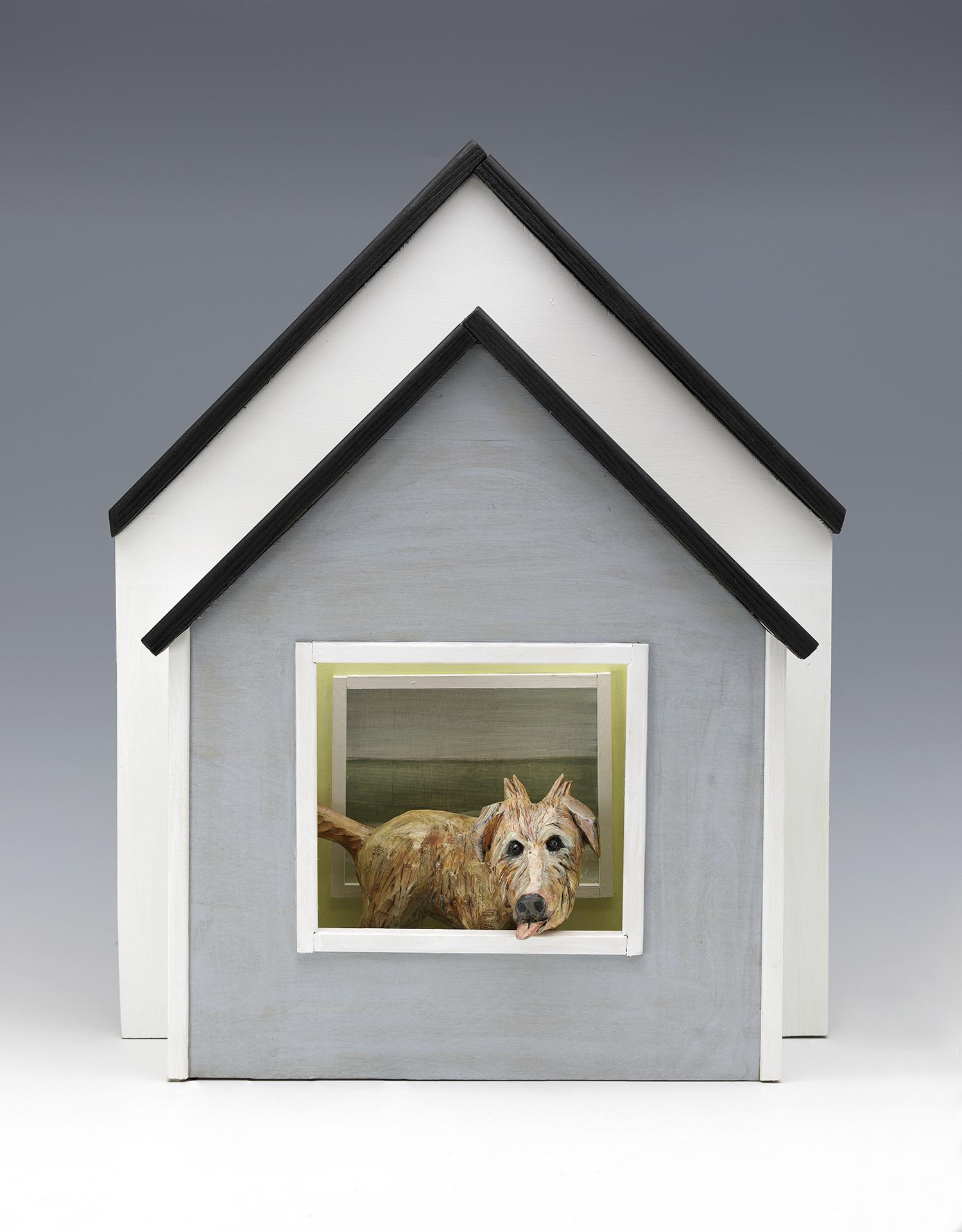 saltboxdog.jpg