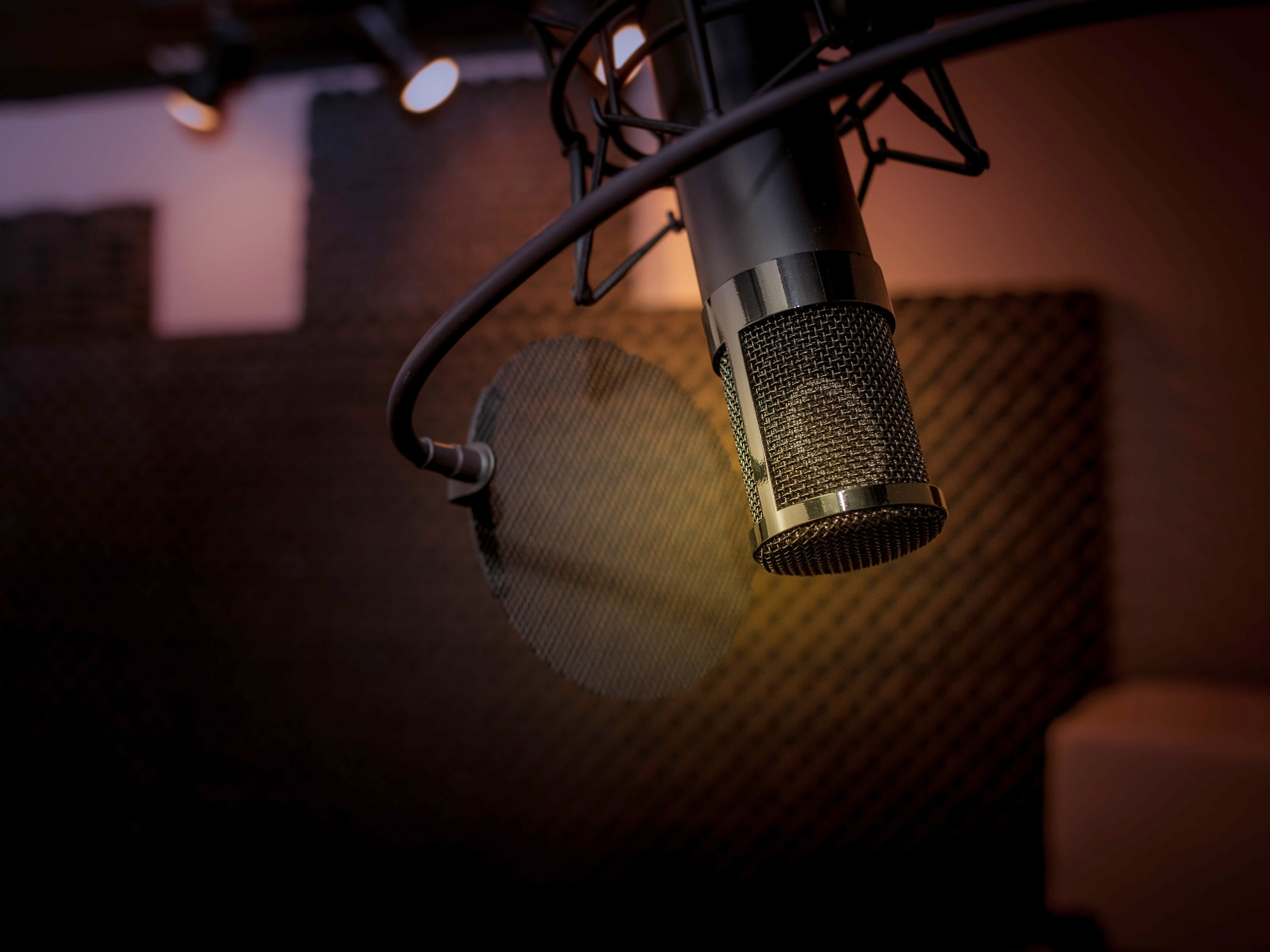 Recording - Our acoustically tuned environments are routinely used to record everything from vocals and drums to string quartets.
