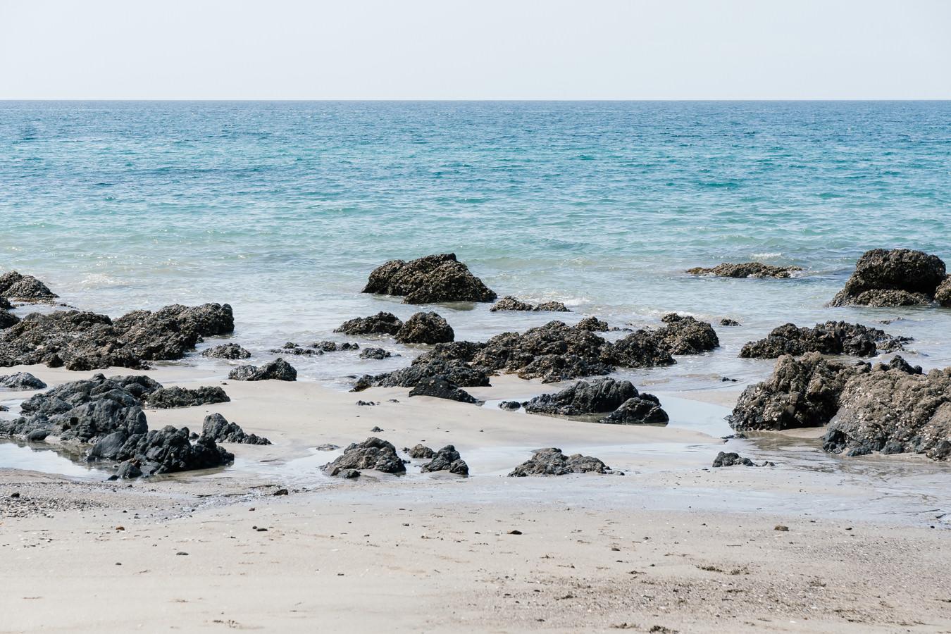 Palm Beach, Waiheke Island