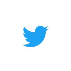 2018_Canvs_Website_Research_250x250_Twitter.jpg