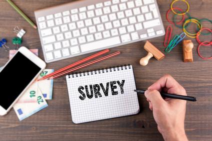 Canvs-Surveys-IMAGE.jpg