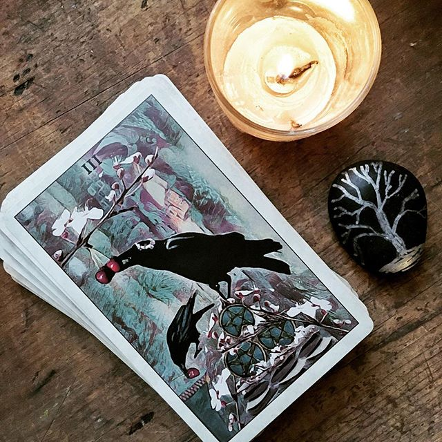 Three of Pentacles: teamwork and harmonious collaboration. Hmm… cards were a little off today, but to be fair, I was rushing this morning! ☺️ . . . #tarottribe  #tarot #dailytarot #tarotreadersofinstagram #crowtarot #divination #oracle #fortuneteller #cartomancy #tarotcards  #oraclecards #pagan #pagans #pagansofinstagram #witch #witchesofinstagram #witches