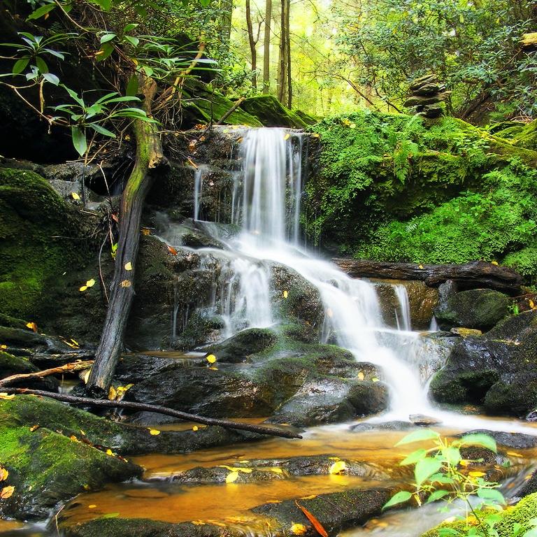 waterfall_flicker_3976259894_a32801432c_b.jpg
