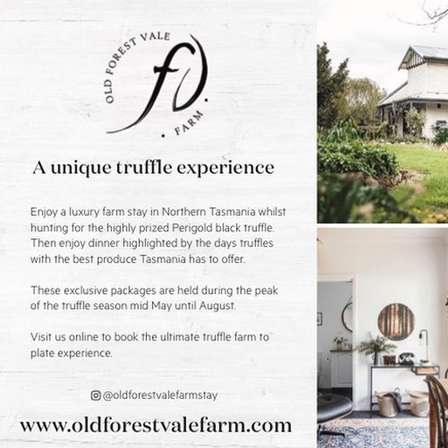 Interested in hunting for truffles and the best produce Tasmania has to offer come join us on our truffle experiences. Book via our link in bio. Use promo code INSTA for a 10% discount #truffle #tasmania #instatasmania #gourmet #travel #trufflehunt #foodie #truffledog #organic #luxury #countrystylemag